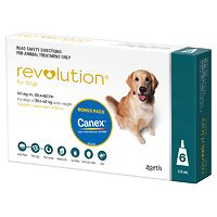 Revolution for Dogs 20.1-40kg - Teal 6pk