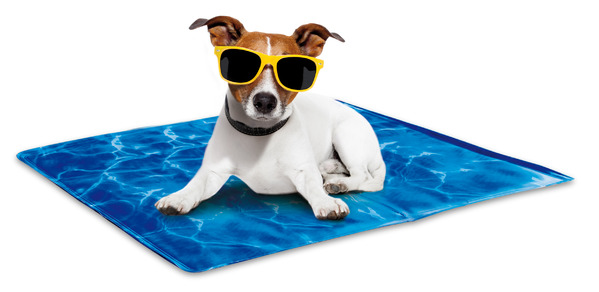 Cool Dog Mat All For Paws Dog Cooling Mats For Kennels