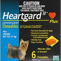 Heartgard Plus Chews Small Dog Blue 6's