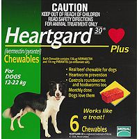 Heartgard Plus Chews Medium Green 6pk