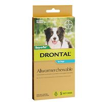 Drontal Allwormer Medium Dogs 10kgs - 5 tabs