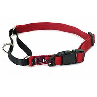 Black Dog Training Collar