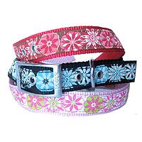 Dogue Floral Ribbon Collar