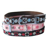 Dogue Circle Ribbon Dog Collar