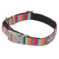 Fuzzyard Dog Collar - Coney Island