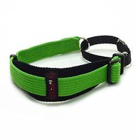Black Dog Greyhound Sighthound Collar 2Tone