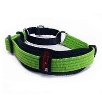 Black Dog Whippet Collar - 2 Tone