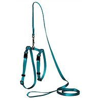 PP Adjustable Cat or Puppy Harness with Leash