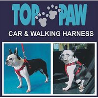 Car & Walking Harness