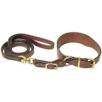 Greyhound Collar & Leash Set