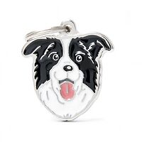 My Family Dog ID Tag Border Collie