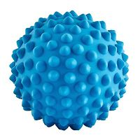 Aussie Dog Catch Ball Soft Blue